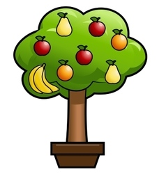 Magic fruit tree vector