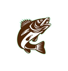 Walleye fish jumping isolated retro vector