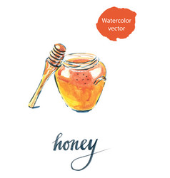 Watercolor of jar with honey vector