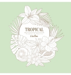 Tropical plants and fruits set vector