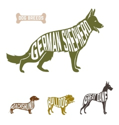 Isolated dog breed silhouettes set with names of vector image vector image