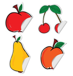Fruit sticker vector