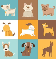 Funny and friendly dogs and puppies vector