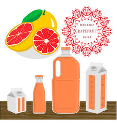 the theme grapefruit vector image