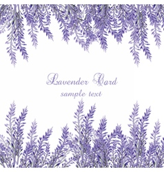 Lavender Card with flowers in watercolor paint vector image