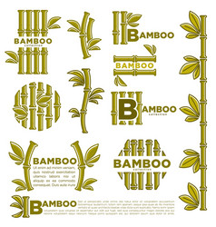 Bamboo branch leaf icons template vector