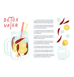 detox water vector image