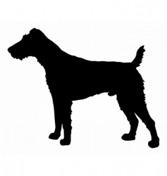 fox terrier silhouette vector image