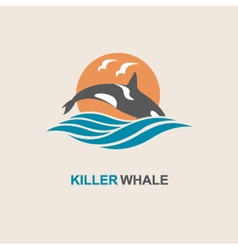 killer whale icon vector image
