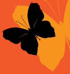 butterfly effect vector image