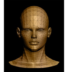Human gold head vector image