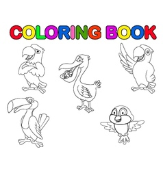 Bird collection coloring book vector