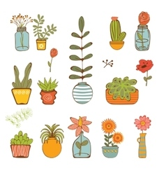 Beautiful set of hand drawn houseplants vector
