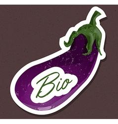 Bio eggplant tag vector image vector image