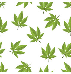 Cannabis leaf seamless on a white background vector