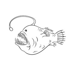Deep sea fish with light coloring vector