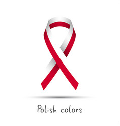 modern colored ribbon with the polish colors vector image vector image