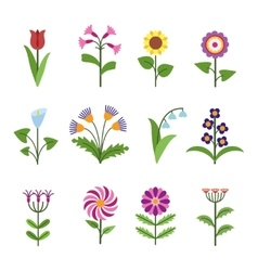 Stylized minimalistic flowers vector image vector image