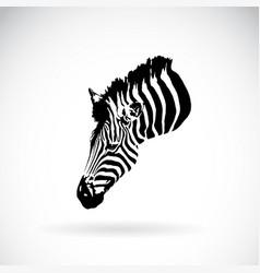 An zebra head on white background wild animals vector