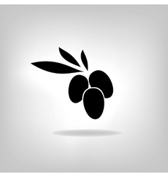 olive with leaves label vector image