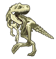 Skeleton of classic prehistoric dinosaur vector