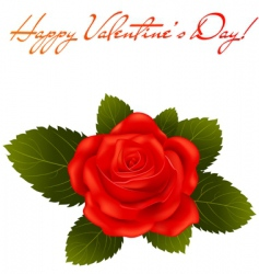 Valentine's Day greeting card vector image vector image