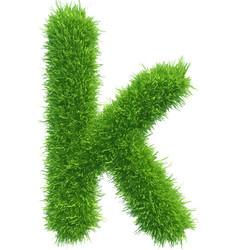 Small grass letter k on white background vector