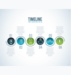 timeline infographic business money diagram circle vector image