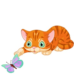 Kitten plays with the butterfly vector