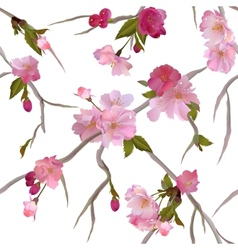 seamless background with sakura branch vector image