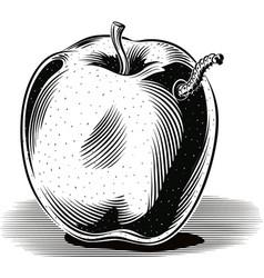 Golden delicious apple ripe with a caterpillar vector