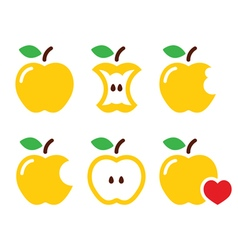 Yellow apple apple core bitten half icon vector