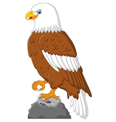 Cartoon eagle posing vector