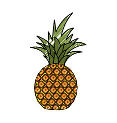 Delicious pineapple fruit vector