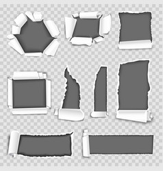 paper torn holes isolated set on vector image vector image