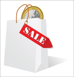 sale and the euro in the bag vector image