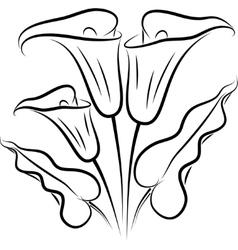 Callas silhouette vector
