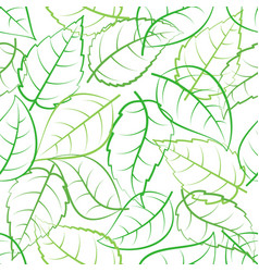 Green leaves seamless pattern vector