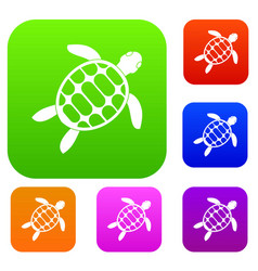 turtle set color collection vector image