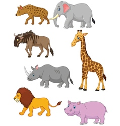 Collection animal africa vector
