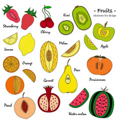 A set of hand-drawn cute fruit for design vector