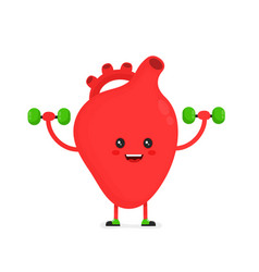 cute happy smiling heart organ doing exercises vector image