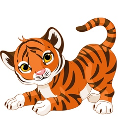 Playful tiger cub vector