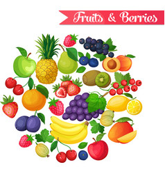 background with fruits and berries vector image vector image