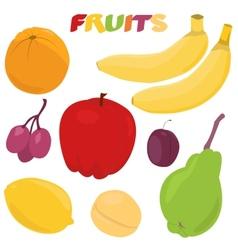 Cartoon fruit set vector image vector image