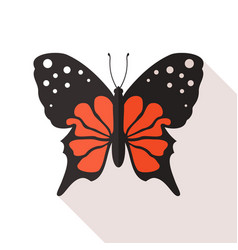 flat butterfly vector image