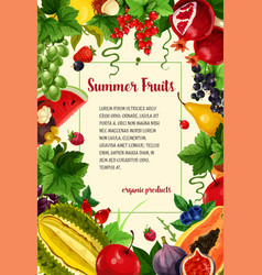 Poster summer berries and tropical fruits vector