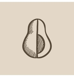 Avocado sketch icon vector