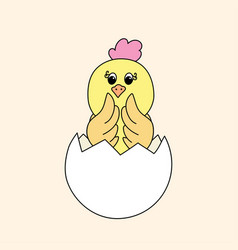 a newborn easter chick vector image
