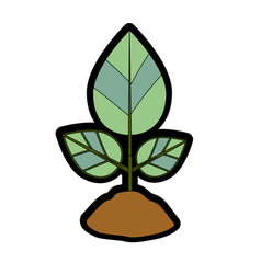 Natural plant with leaves and ground to ecology vector